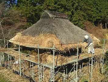 差し茅方式の葺き替え工事、茅葺職人は伝匠舎の加々美栄です