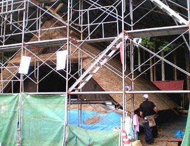 茅の刈り込み、甲(かぶと)造りの屋根がほぼ完成