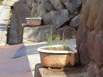 _Users_joha_Documents_石川工務所_トピックス_過去トピックスhtml_0610-3-1.jpg