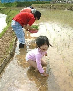 _Users_joha_Documents_石川工務所_トピックス_過去トピックスhtml_0665-3.jpg