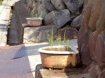 _Users_joha_Documents_石川工務所_トピックス_過去トピックスhtml_0665-6.jpg