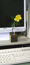 _Users_joha_Documents_石川工務所_トピックス_過去トピックスhtml_068-2-2.jpg