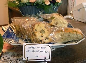 _Users_joha_Documents_石川工務所_トピックス_過去トピックスhtml_noko4.jpg