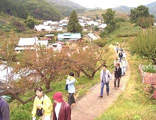 _Users_joha_Documents_石川工務所_トピックス_過去トピックスhtml_viewpoint.jpg