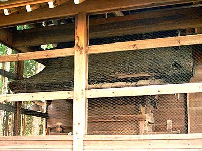 着工前 檜皮葺きの屋根が傷んでいる