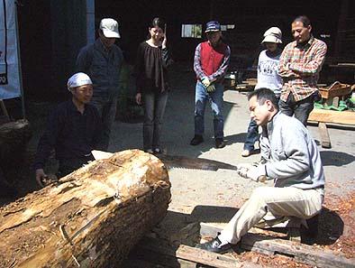 クリの丸太をオガ挽きする真鍋嘉隆さん
