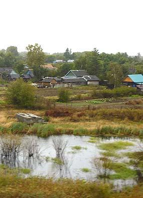 ダーチャという農舎集落。別荘とは違う。約10年前のロシアの通貨危機で庶民の農の形が注目された